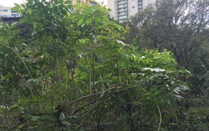 Foto de terreno habitacional en venta en cda bosques de moctezuma 1, paseos del bosque, naucalpan de juárez, estado de méxico, 1473397 no 06
