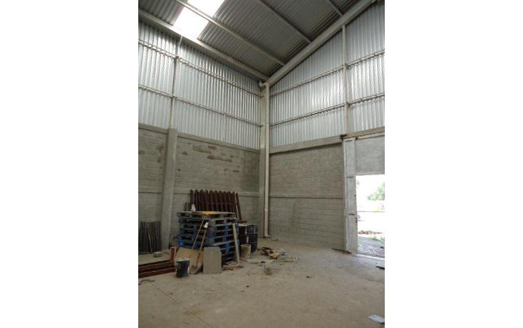 Foto de nave industrial en venta en  , cebadales primera sección, cuautitlán, méxico, 1295925 No. 06