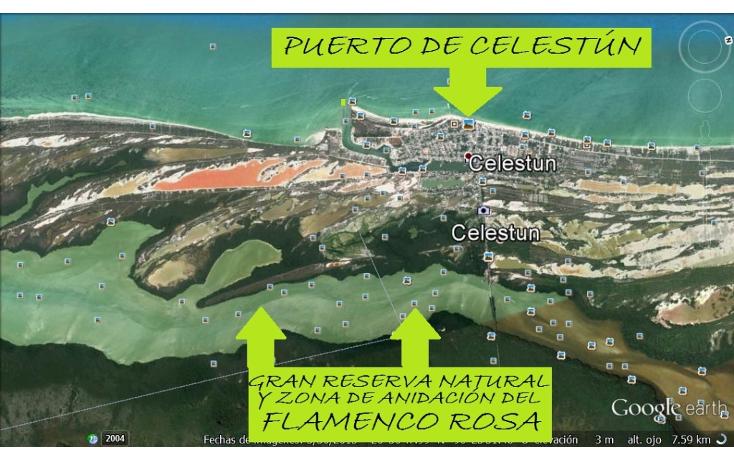 Foto de terreno comercial en venta en  , celestun, celestún, yucatán, 1059545 No. 02