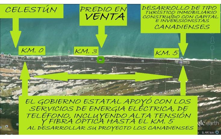 Foto de terreno comercial en venta en  , celestun, celestún, yucatán, 1059545 No. 05