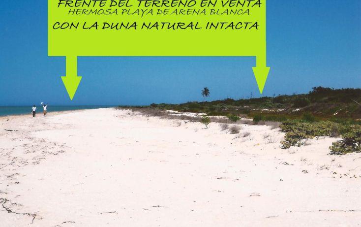 Foto de terreno comercial en venta en, celestun, celestún, yucatán, 1059545 no 06