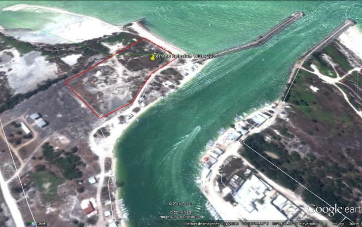 Foto de terreno comercial en venta en  , celestun, celestún, yucatán, 1186107 No. 02