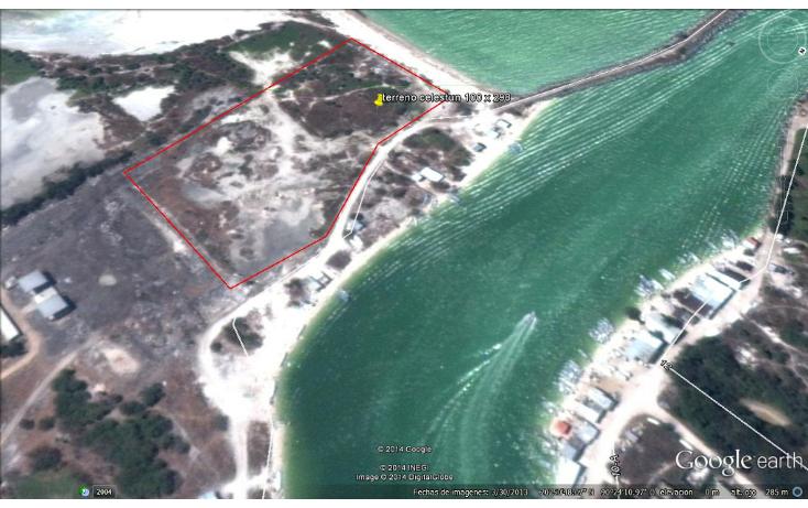 Foto de terreno comercial en venta en  , celestun, celestún, yucatán, 1186107 No. 03