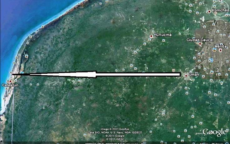 Foto de terreno habitacional en venta en  , celestun, celestún, yucatán, 1279947 No. 03