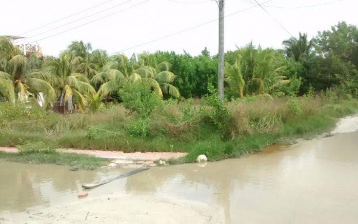 Foto de terreno habitacional en venta en, celtun, chichimilá, yucatán, 1692240 no 01
