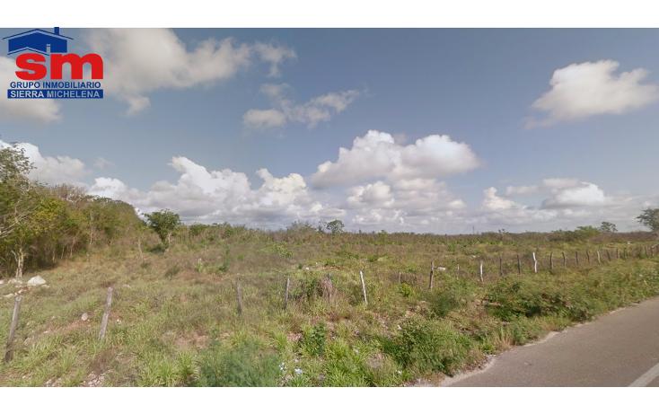 Foto de terreno habitacional en venta en  , cenote azul, tizimín, yucatán, 1460273 No. 01