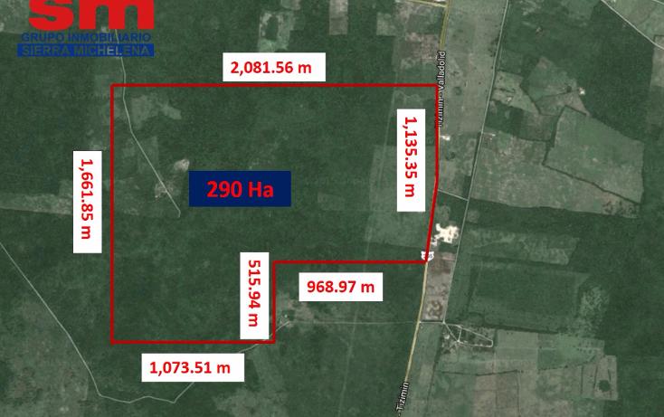 Foto de terreno habitacional en venta en  , cenote azul, tizimín, yucatán, 1460273 No. 06