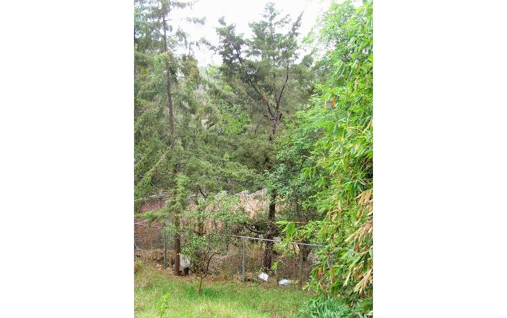 Foto de terreno habitacional en venta en centenario , bosques de tarango, álvaro obregón, distrito federal, 1965477 No. 07