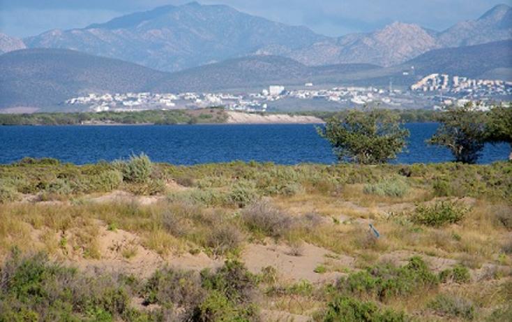 Foto de terreno habitacional en venta en  , centenario, la paz, baja california sur, 1048325 No. 01