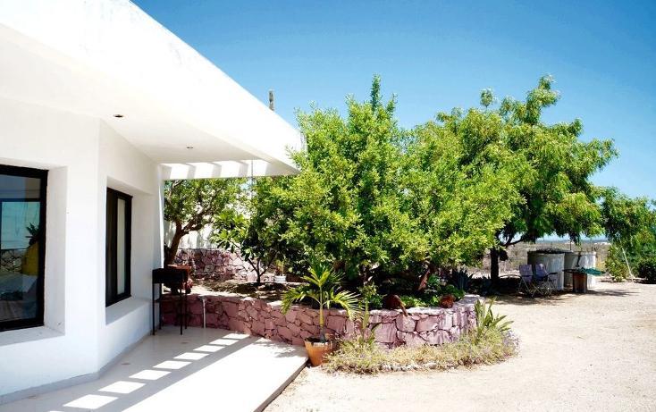Foto de casa en venta en  , centenario, la paz, baja california sur, 1054651 No. 22