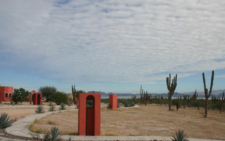 Foto de terreno habitacional en venta en  , centenario, la paz, baja california sur, 1076827 No. 01