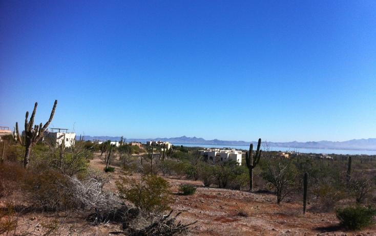 Foto de terreno habitacional en venta en  , centenario, la paz, baja california sur, 1089687 No. 01