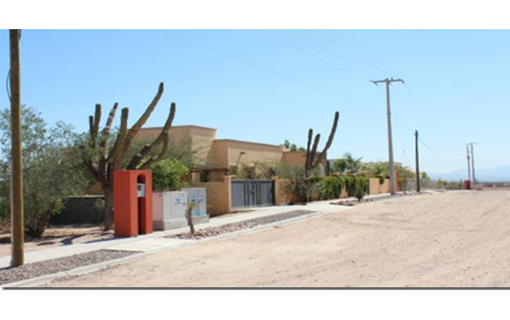 Foto de terreno habitacional en venta en  , centenario, la paz, baja california sur, 1096289 No. 05