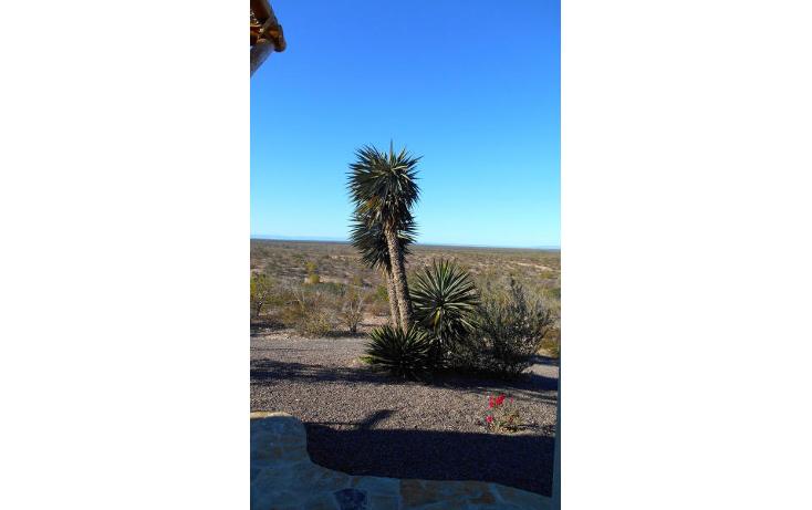 Foto de casa en venta en  , centenario, la paz, baja california sur, 1116303 No. 40