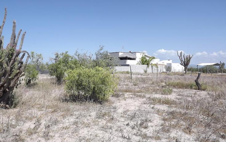 Foto de terreno habitacional en venta en  , centenario, la paz, baja california sur, 1123533 No. 05