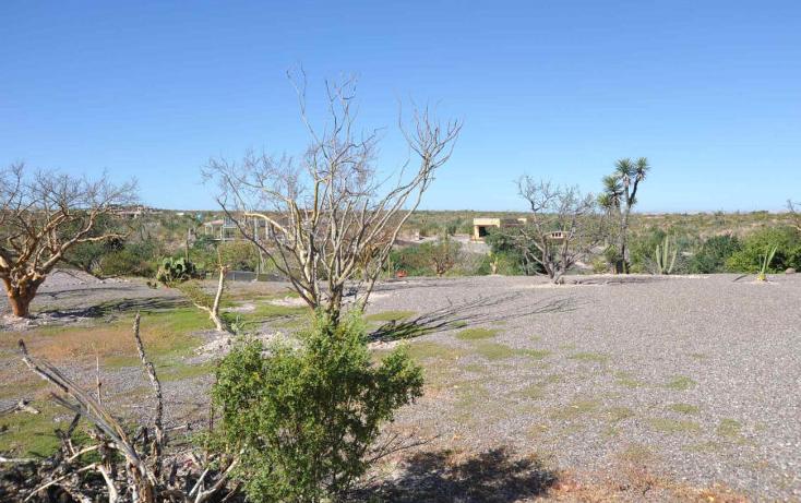 Foto de terreno habitacional en venta en  , centenario, la paz, baja california sur, 1141355 No. 03