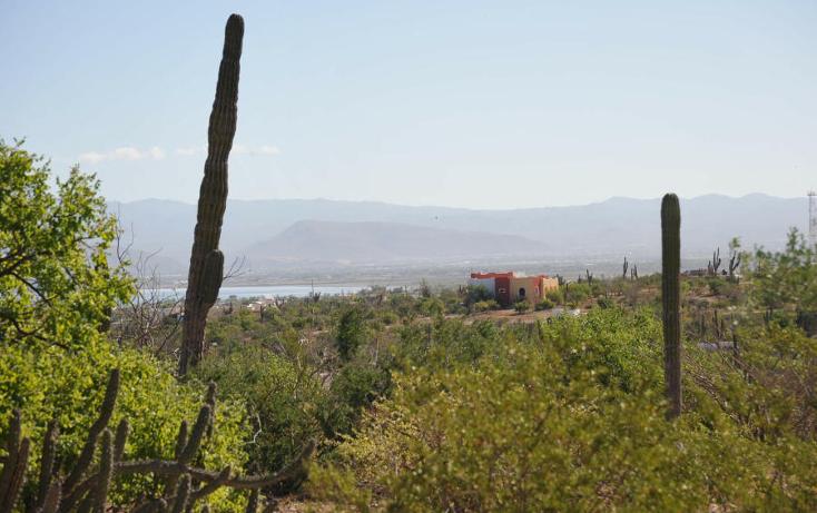 Foto de terreno habitacional en venta en  , centenario, la paz, baja california sur, 1141355 No. 06