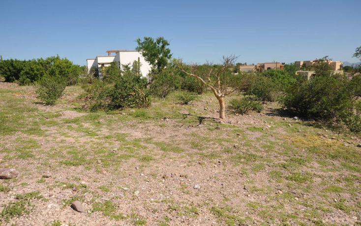 Foto de terreno habitacional en venta en  , centenario, la paz, baja california sur, 1170247 No. 05