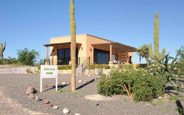 Foto de terreno habitacional en venta en  , centenario, la paz, baja california sur, 1170247 No. 10