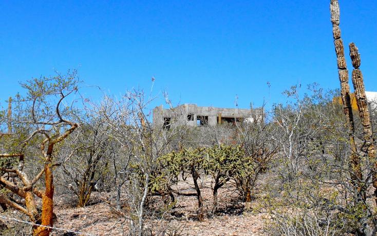 Foto de casa en venta en  , centenario, la paz, baja california sur, 1182167 No. 13
