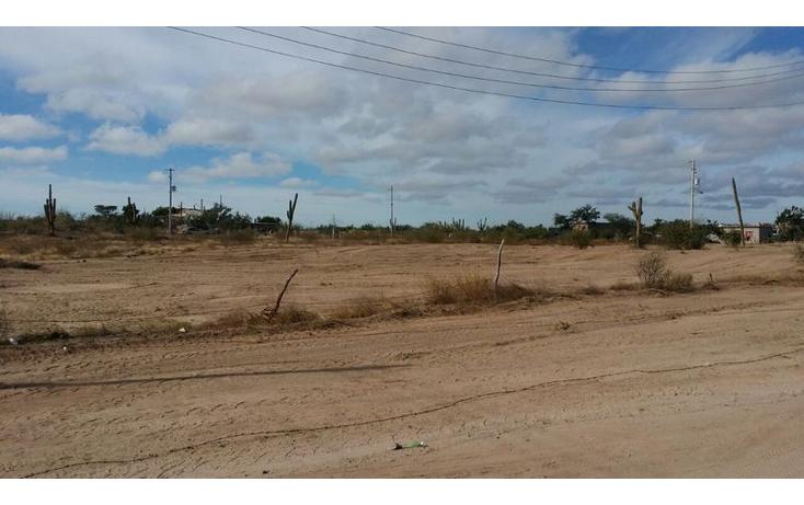 Foto de terreno habitacional en venta en  , centenario, la paz, baja california sur, 1182239 No. 04