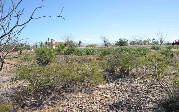 Foto de terreno habitacional en venta en  , centenario, la paz, baja california sur, 1189221 No. 06