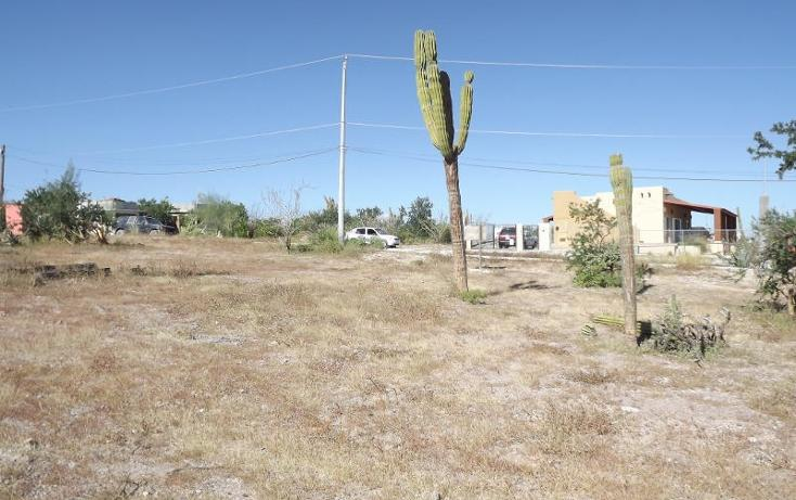 Foto de terreno habitacional en venta en  , centenario, la paz, baja california sur, 1194603 No. 04