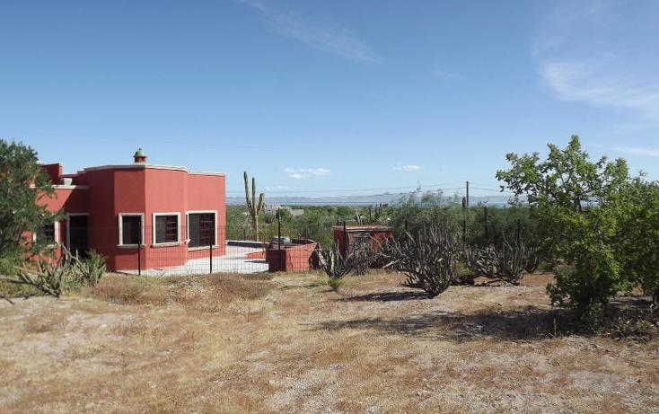 Foto de terreno habitacional en venta en  , centenario, la paz, baja california sur, 1194603 No. 05
