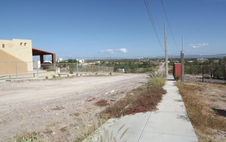 Foto de terreno habitacional en venta en  , centenario, la paz, baja california sur, 1194603 No. 07