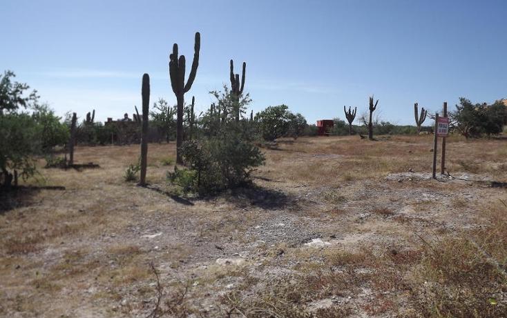 Foto de terreno habitacional en venta en  , centenario, la paz, baja california sur, 1194603 No. 08