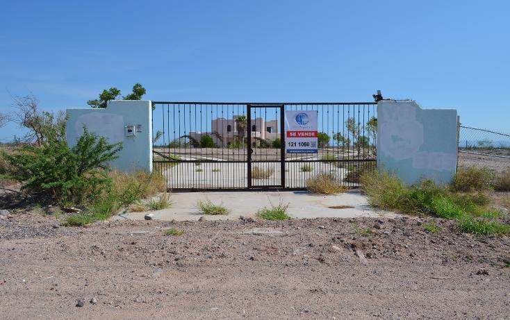 Foto de casa en venta en  , centenario, la paz, baja california sur, 1195043 No. 02