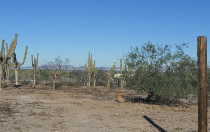 Foto de terreno habitacional en venta en  , centenario, la paz, baja california sur, 1208235 No. 06