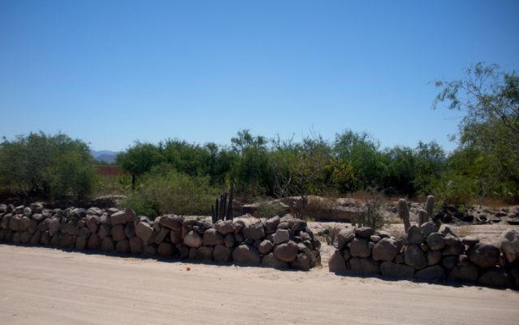 Foto de terreno habitacional en venta en  , centenario, la paz, baja california sur, 1276023 No. 02
