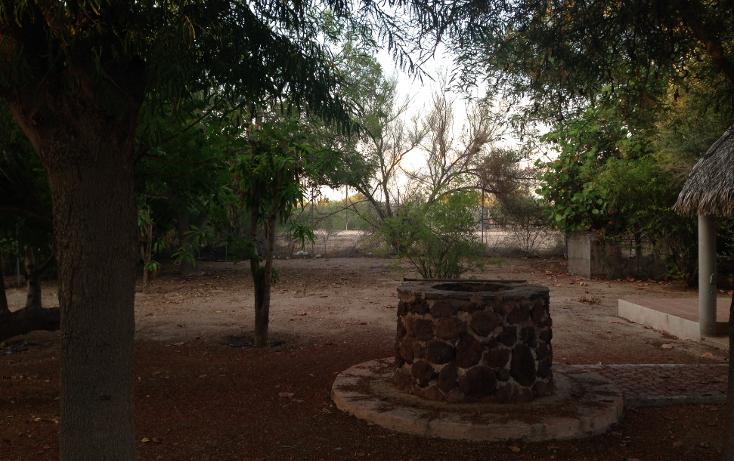 Foto de terreno habitacional en venta en, centenario, la paz, baja california sur, 1291981 no 03