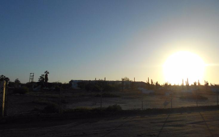 Foto de terreno habitacional en venta en  , centenario, la paz, baja california sur, 1400907 No. 06