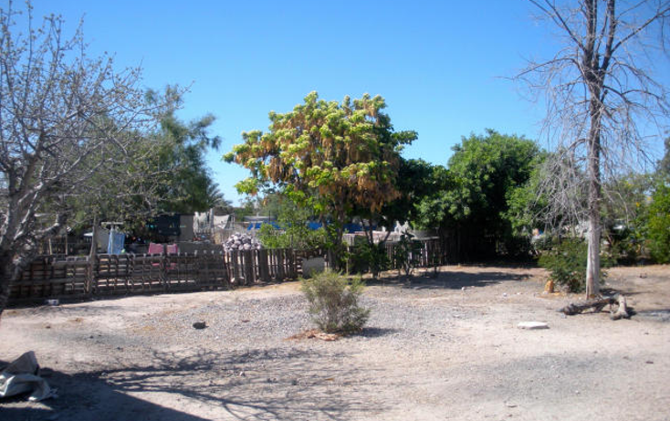 Foto de terreno habitacional en venta en  , centenario, la paz, baja california sur, 1438353 No. 01