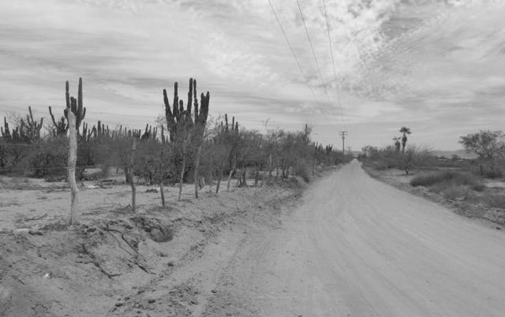 Foto de terreno habitacional en venta en  , centenario, la paz, baja california sur, 1462333 No. 05