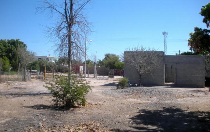 Foto de terreno habitacional en venta en  , centenario, la paz, baja california sur, 1529696 No. 02