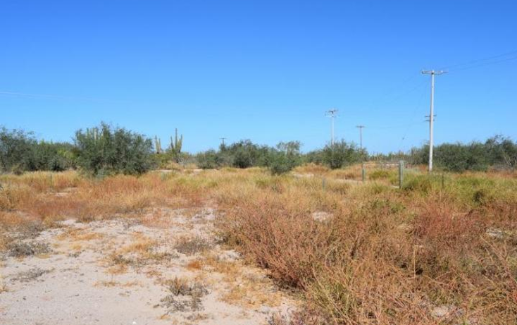 Foto de terreno habitacional en venta en  , centenario, la paz, baja california sur, 1605578 No. 04