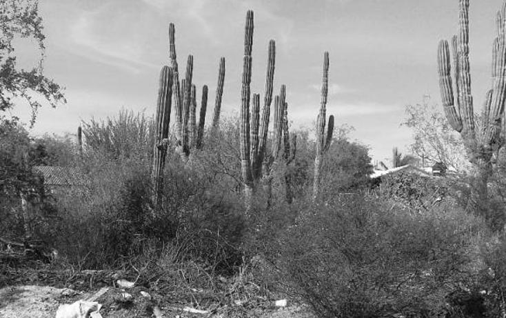 Foto de terreno habitacional en venta en  , centenario, la paz, baja california sur, 1704272 No. 04