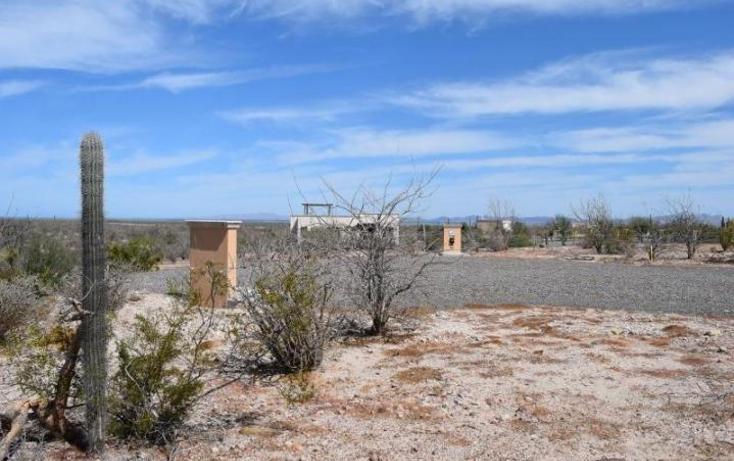 Foto de terreno habitacional en venta en  , centenario, la paz, baja california sur, 1704272 No. 07