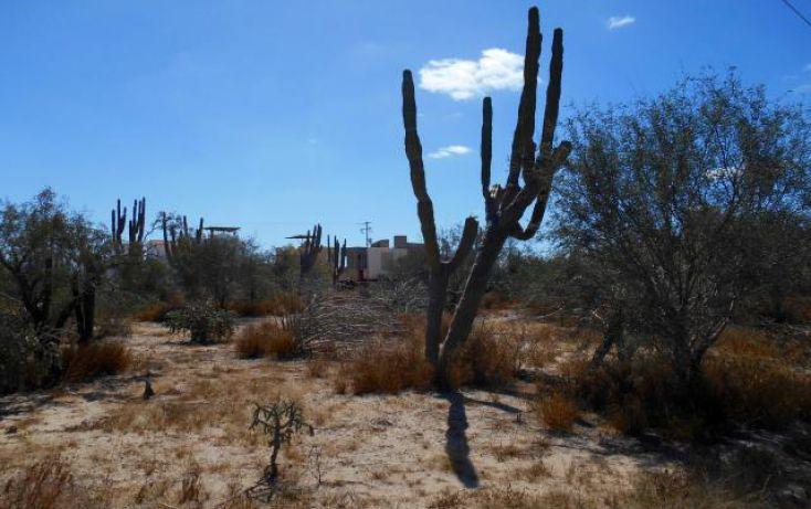 Foto de terreno habitacional en venta en, centenario, la paz, baja california sur, 1722614 no 03