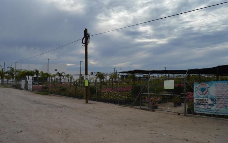 Foto de terreno comercial en venta en carretera transpeninsular *, centenario, la paz, baja california sur, 1766206 No. 02