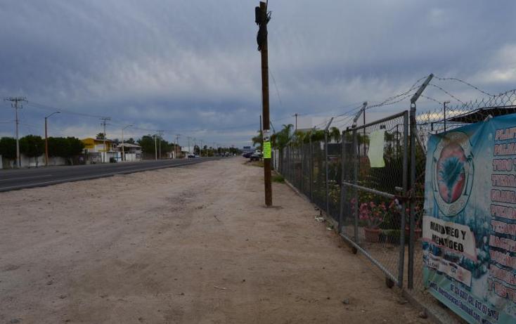 Foto de terreno comercial en venta en carretera transpeninsular *, centenario, la paz, baja california sur, 1766206 No. 05