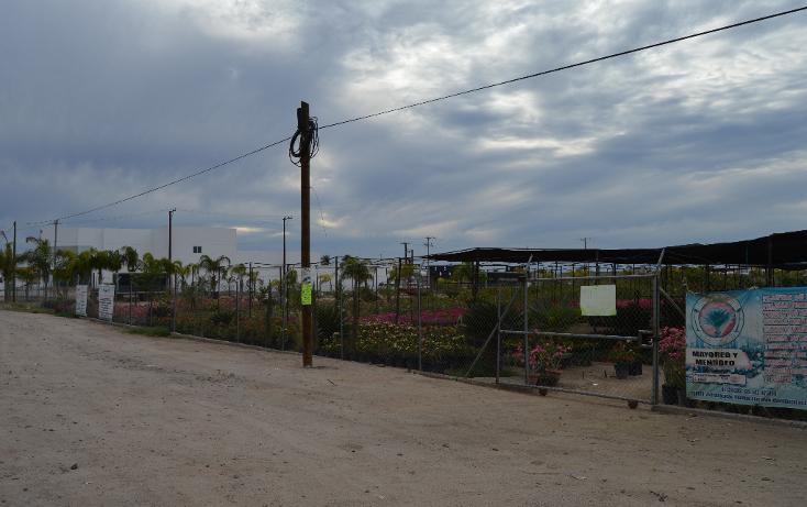 Foto de terreno comercial en venta en  , centenario, la paz, baja california sur, 1769824 No. 01
