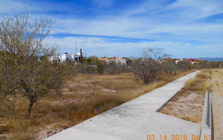 Foto de terreno habitacional en venta en  , centenario, la paz, baja california sur, 1771544 No. 01