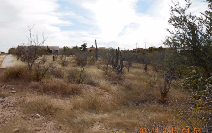 Foto de terreno habitacional en venta en  , centenario, la paz, baja california sur, 1771544 No. 02