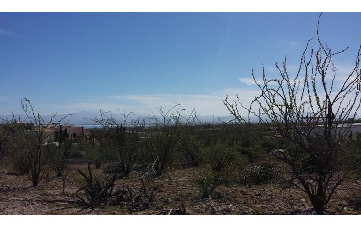 Foto de terreno habitacional en venta en  , centenario, la paz, baja california sur, 1999490 No. 05