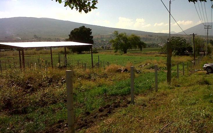 Foto de terreno industrial en venta en  , central de abastos, zamora, michoacán de ocampo, 501253 No. 07