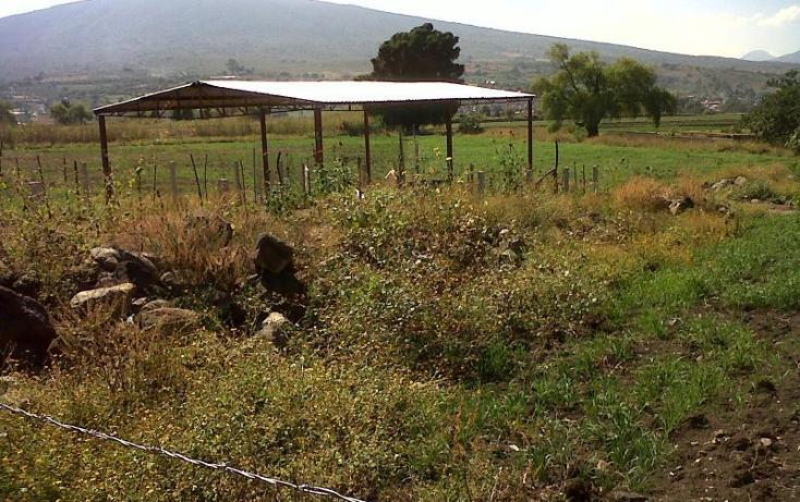 Foto de terreno industrial en venta en  , central de abastos, zamora, michoacán de ocampo, 501253 No. 10
